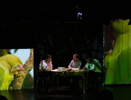 """Rheinerlei in """"Biotopia. Ein Kölner Bestiarium"""" – Theater im Bauturm"""