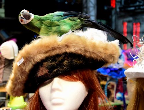 Karnevalsmarkt der Stunksitzung
